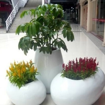 玻璃钢室内花盆HP005